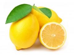 Citron ( Demeter : certification Agriculture biodynamique) Sicile