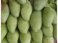 Mangue sauvage( sous reserve d'arrivage)