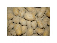 Pommes de terre EDEN