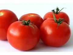 Tomates en cageot de 5Kg